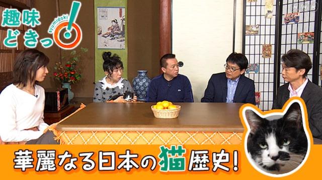 NHK Eテレ「趣味どきっ!」の不思議な猫世界<全8回>