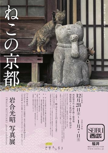 岩合光昭 写真展「ねこの京都」西武福井