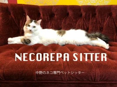 猫専門のペットシッター「ネコリパシッター」