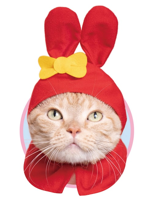 マイメロディ(赤ずきん) by かわいい猫のかぶりもの