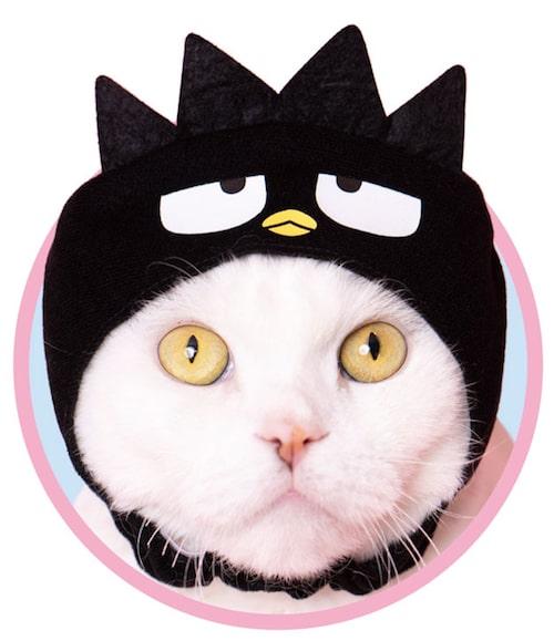 バットばつ丸 by かわいい猫のかぶりもの