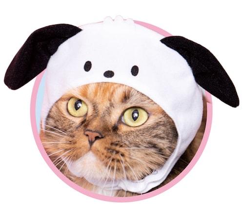 ポチャッコ by かわいい猫のかぶりもの