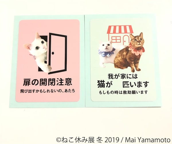 Mai Yammoto ステッカー