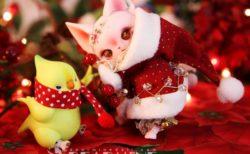 限定20体のゴージャスなクリスマス猫ドールがdolkから発売