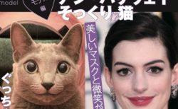 今年の年末も猫のスクープニュースが目白押し!「週ニャン大衆」の第2弾が発売