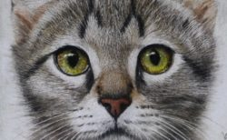 超リアルな猫のクレヨン画展が12/26から開催!愛猫の絵画制作もオーダーできるニャ