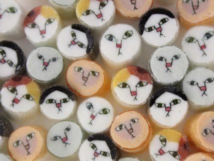 愛猫のイラストを描いて送るだけ!パパブブレが猫キャンディのモデルを募集中