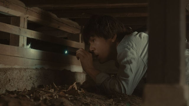 床下で猫を捜索する甲本雅裕さん by 猫探偵の事件簿