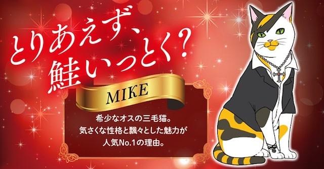 気さくなNo.1三毛猫MIKE(マイク) by 漫画「ネコホスト」