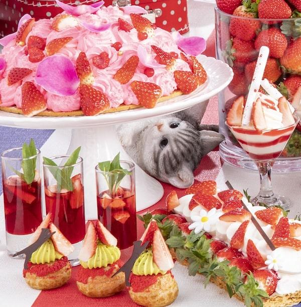 苺スイーツの下から見上げる猫の羊毛フェルト人形 by ストロベリーCATS コレクション