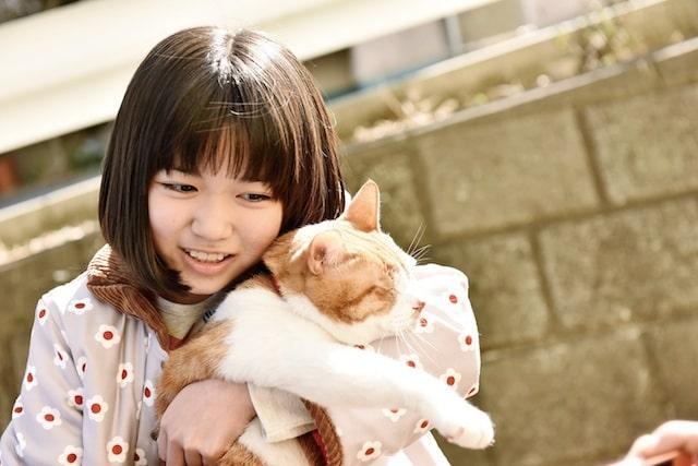 ネコを抱く平澤宏々路 by 映画「トラさん~僕が猫になったワケ~」