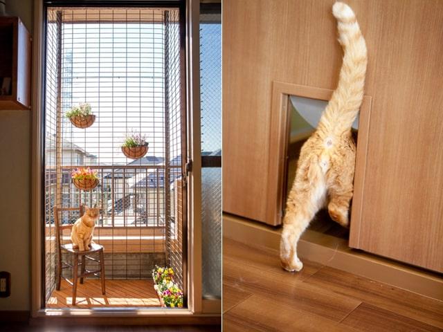 サノスケ不動産の猫仕様カスタマイズ例