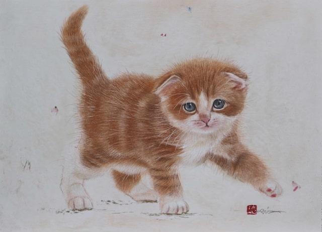 クレヨンと水彩絵具で描いた茶白のスコティッシュフォールド「作品名:君も僕も」 by 市来功成