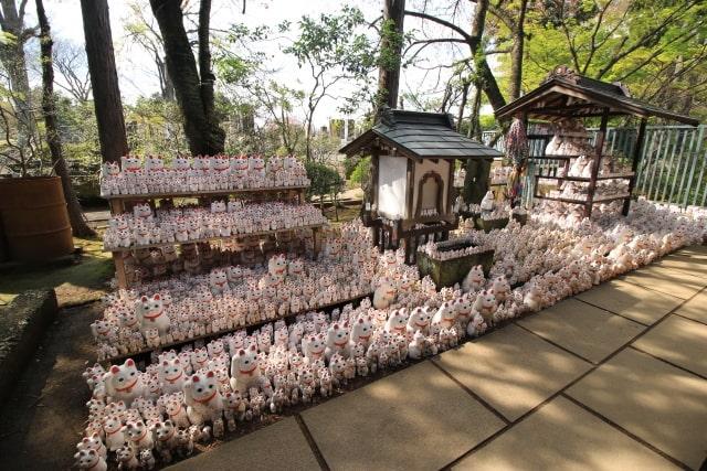 たくさんの招き猫が飾られている豪徳寺のイメージ写真