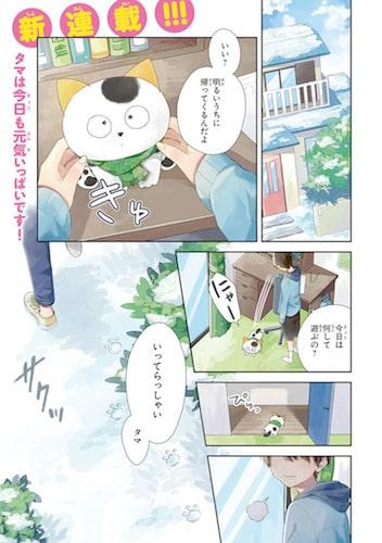タマ&フレンズの擬人化コミック「うちタマ?!」のワンシーン1