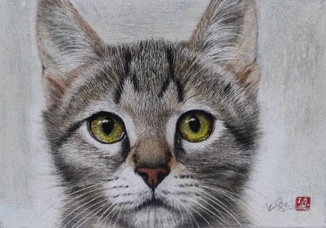 クレヨンと水彩絵具で描いたリアルな猫の絵画「作品名:きっと大丈夫」 by 市来功成