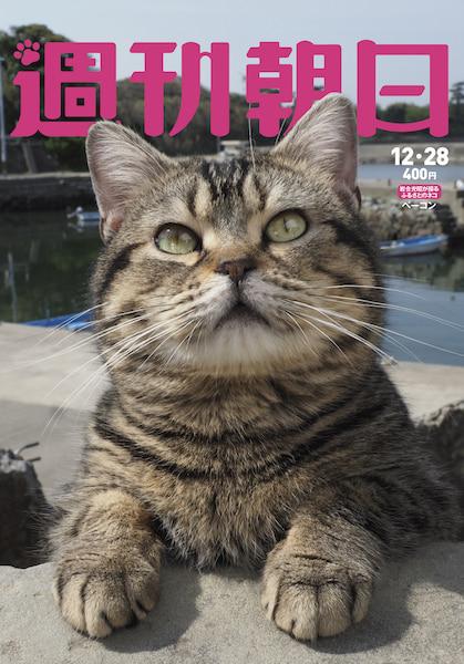 一冊まるごと猫まみれ「週刊朝日」の2018年12月28日号の表紙
