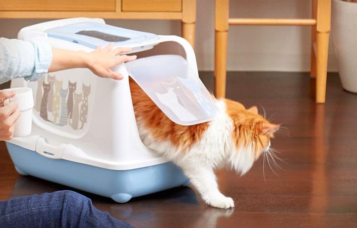 ベルギー製の猫トイレ「トレンディキャット マサイ」の製品イメージ