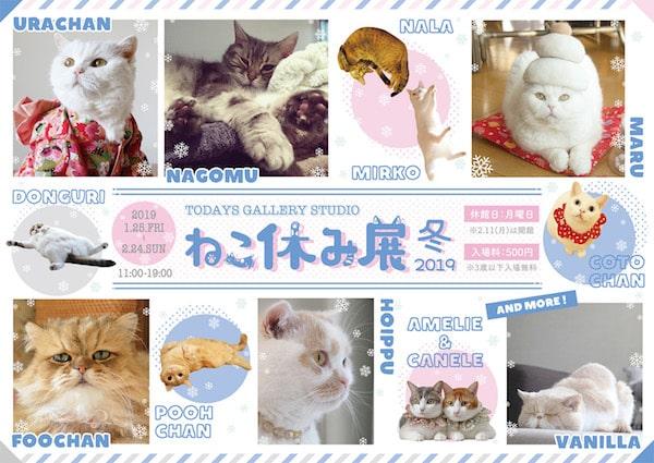 「ねこ休み展」冬 2019のパンフレットイメージ