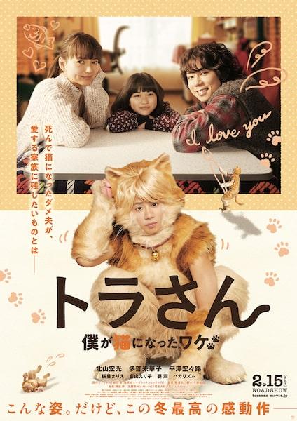 映画「トラさん~僕が猫になったワケ~」の新ビジュアルポスター