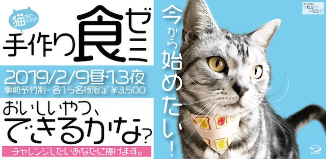 猫の飼い主さん向けセミナー「今から備えたい!猫様のための手作り食ゼミ」 by ネコソダテ