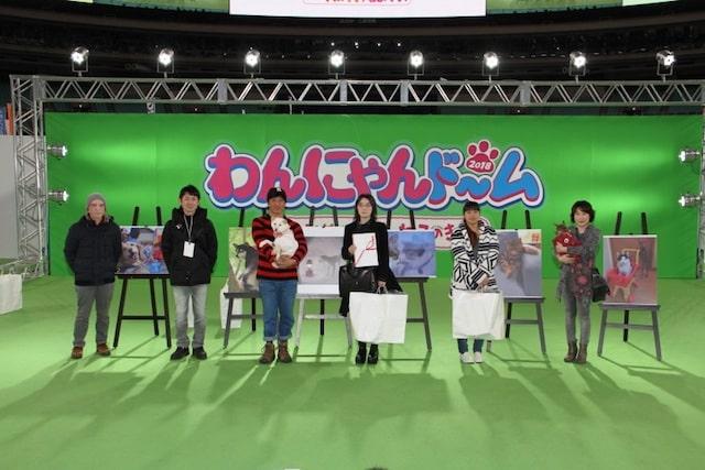 犬猫フォトコンテストの開催風景 by わんにゃんドーム