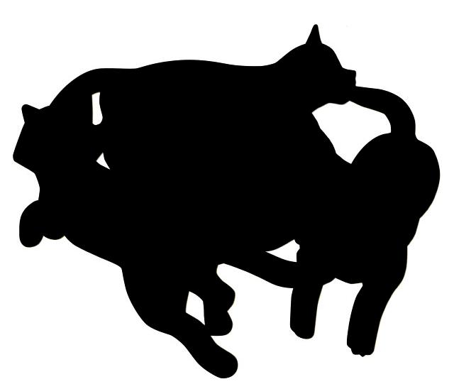 ハンドスピナーの猫版「スピにゃ〜」のシークレットバージョン