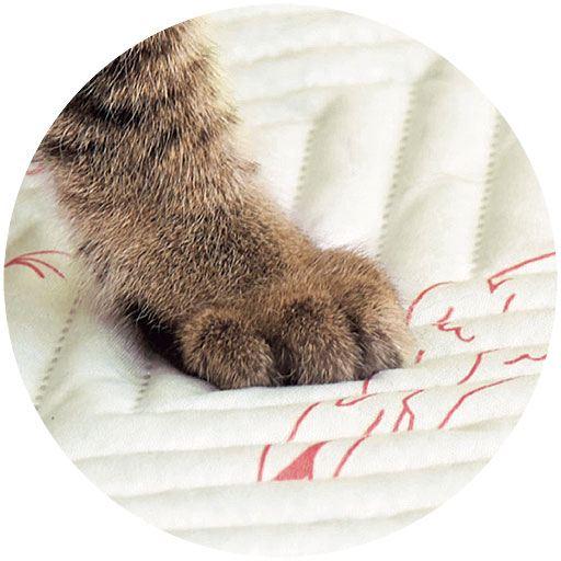 猫のツメが引っかかりにくい生地を採用
