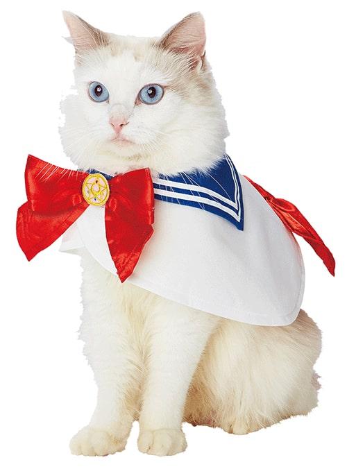 キャラペティのペット用グッズ「なりきりケープ(セーラームーン)」を猫に着用したイメージ