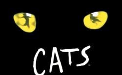 劇団四季のミュージカル「キャッツ」公演1万回記念!猫の写真コンテストを開催中