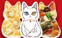 福ねこ弁当の第2弾、白ネコ「小春」バージョン