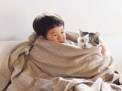 仲良し姿に癒やされるニャ〜♪ ぽっちゃり猫と3才男児の仲良しフォトブック『ハルタとマイロ 男の子と猫はいつも仲よし』