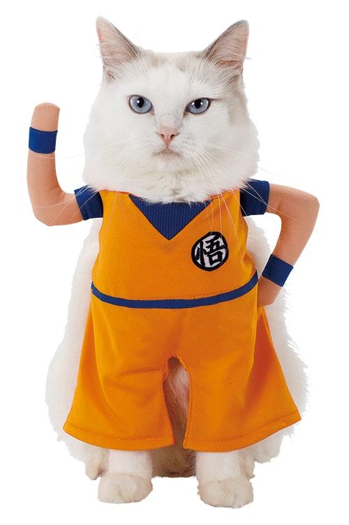 キャラペティのペット用グッズ「猫用変身着ぐるみウェア(孫悟空)」を猫が着用したイメージ