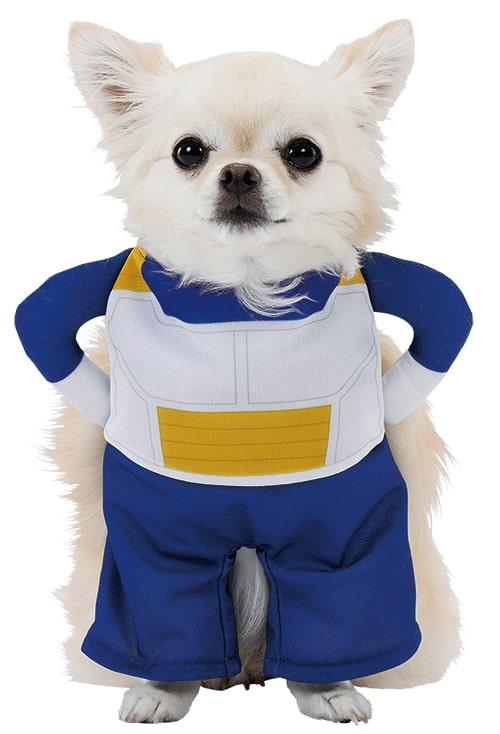キャラペティのペット用グッズ「猫用変身着ぐるみウェア(ベジータ)」を犬が着用したイメージ