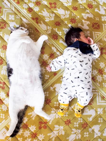 一緒に寝転ぶ猫と人間の赤ちゃん by「ハルタとマイロ 男の子と猫はいつも仲よし」