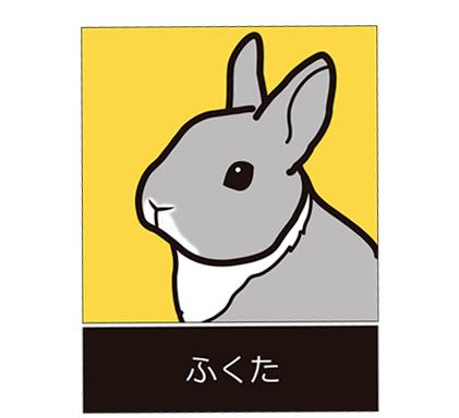 写真からイラスト化したウサギ