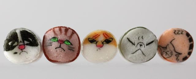 5種類の猫をモデルにした猫ミックスキャンディの応募イラスト bypapabubble(パパブブレ)