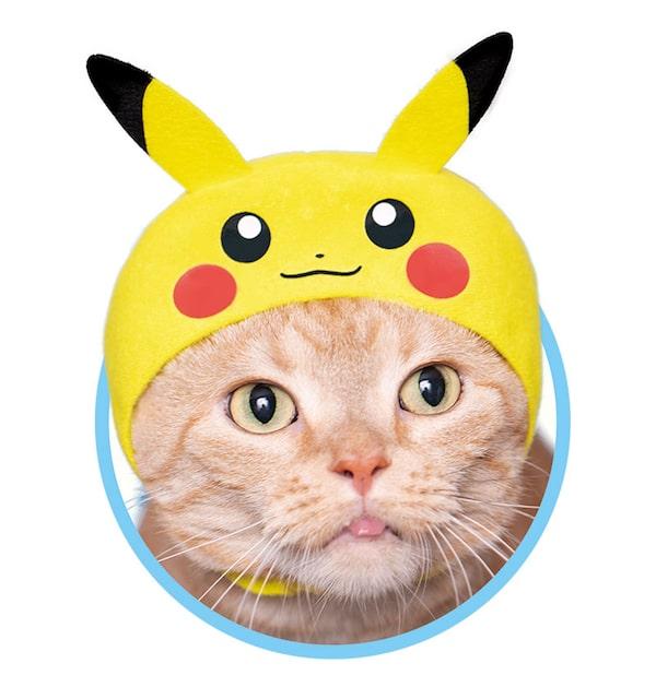 ピカチュウ by かわいい猫のかぶりもの