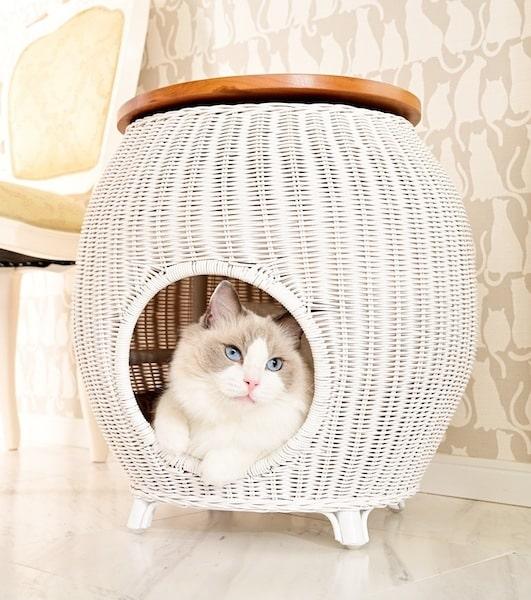 カフェテーブルと猫ベッドが融合した「ラタンカフェテーブルベッド」 by necosekai