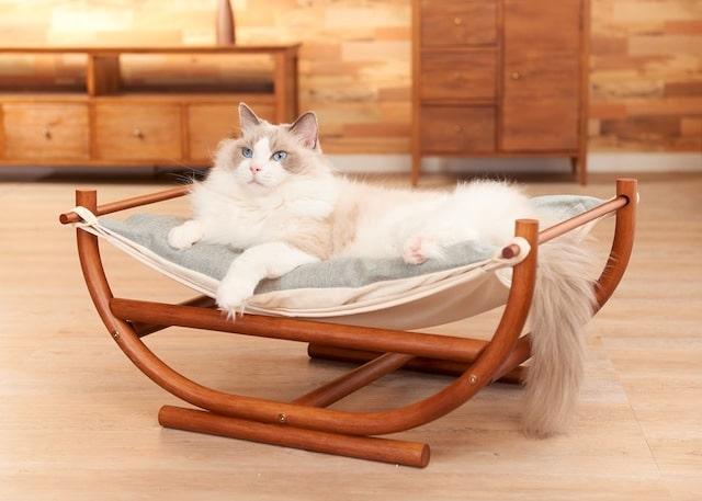 猫が快適にお昼寝するために開発された猫用のハンモック bynecosekai
