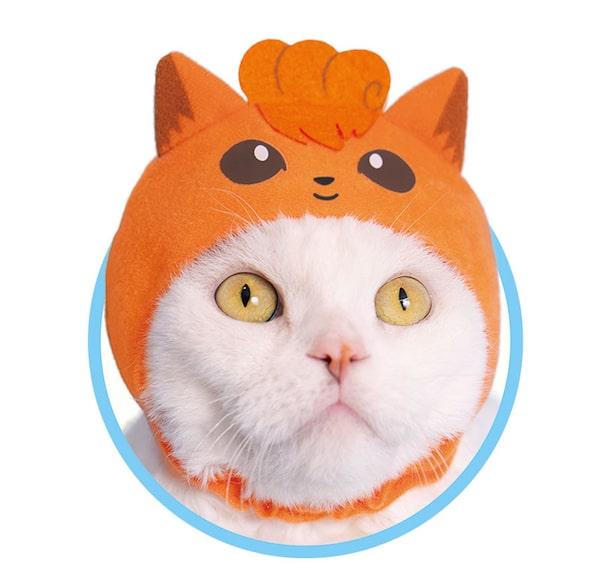 ロコン by かわいい猫のかぶりもの