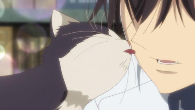 主人公の朏素晴と猫のハル by アニメ「同居人はひざ、時々、頭のうえ。」