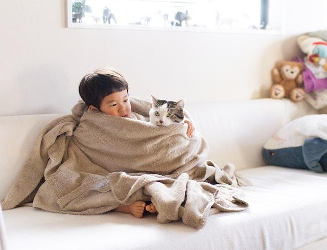 仲良く毛布にくるまる3才児と猫の写真 by「ハルタとマイロ 男の子と猫はいつも仲よし」
