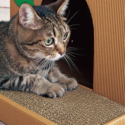 セシールの猫のおうち(別荘型)