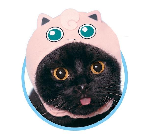プリン by かわいい猫のかぶりもの