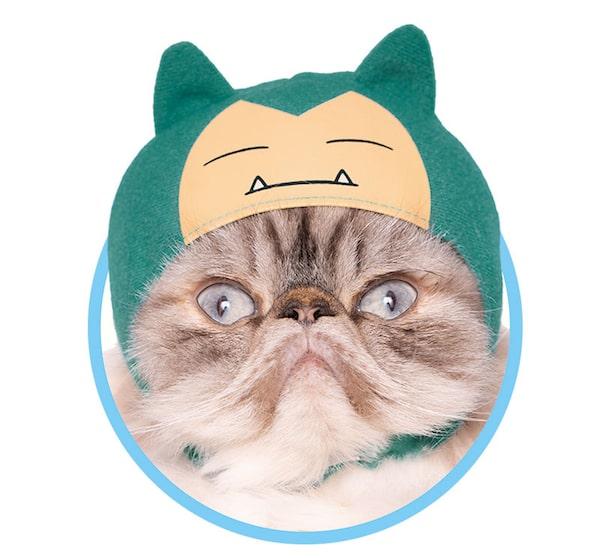 カビゴン by かわいい猫のかぶりもの