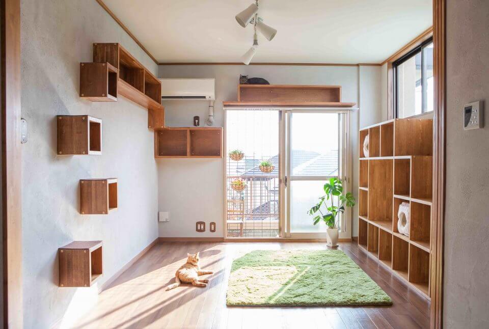 日本初の猫用カスタマイズ可能物件「梅が丘森ビル」のモデルルーム