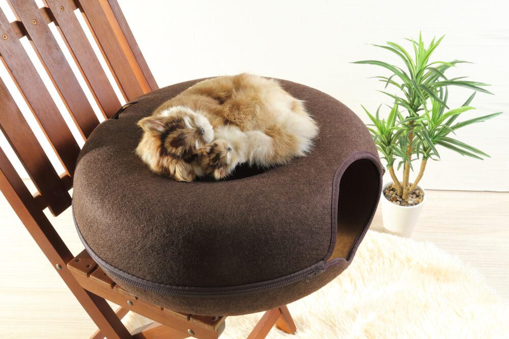 オシャレなドーナツ型の猫ベッド「にゃんドーナツ」の上でくつろぐ猫