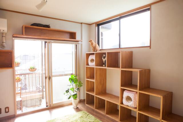 猫が上り下りできるシェルフ「猫棚」 by 梅が丘森ビルのモデルルーム