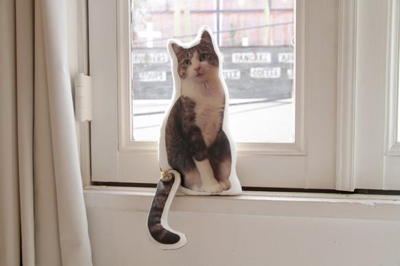 クッション作家・アトリエキジの愛猫の写真をプリントしたクッション